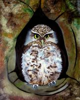 Revised Owl by WendyMitchell