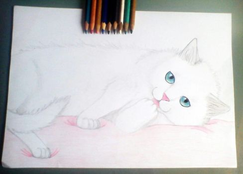 Cat by wolfland2