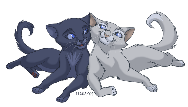 Bluepaw and Snowpaw by tigon