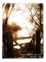Gate of Dreams by roelworks