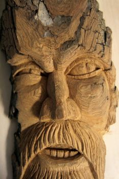 Cynic - wood carving by fantabulous55