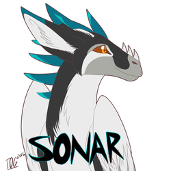 Sonar Headshot by TDG-Arts