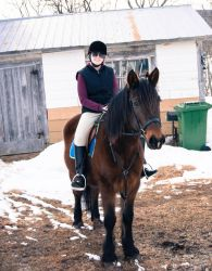 Eventer by breanna-grace