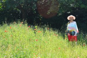 The New Coombe Wood Wild Flower Meadow by aegiandyad