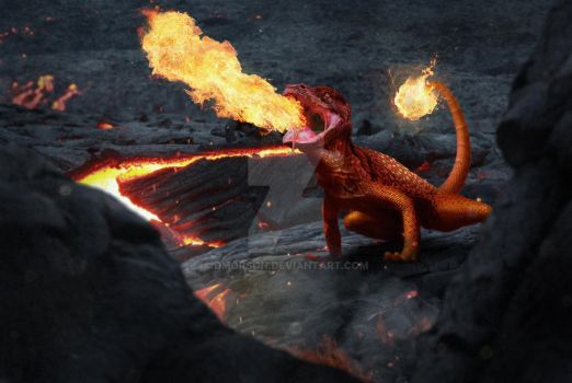 Charmander - Realistic Pokemon by dmorson