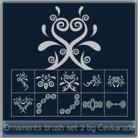 Ornaments brush set 2 by Cevkarade