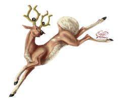 Stantler used Jump Kick - Pokemon Collaboration