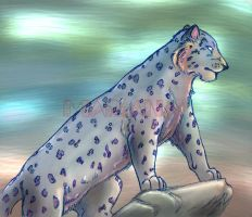 Panthera onca - panther by MarianaDS