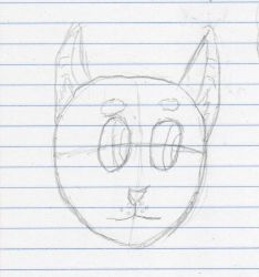 Thymekit Face Sketch by TimothyHD