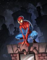 Spidey on the roof by NicChapuis