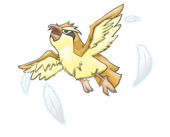 F YEAH PIDGEY - for 60913