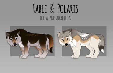 Fable + Polaris Pup Adoption- WINNER ANNOUNCED by Tazihound