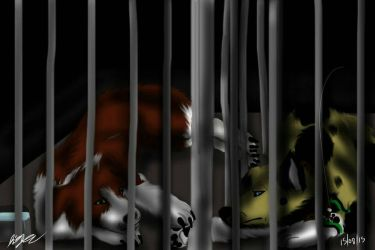 request for LunraAussieWolf Caged by Gerundive