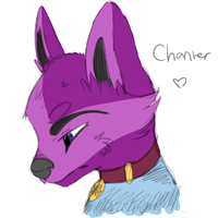Chanter Anthro Coloured Sketch Headshot by Prince-Lionel