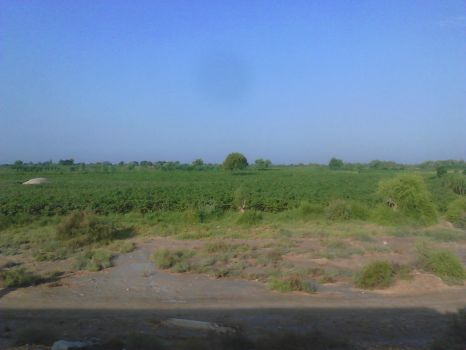 A View from Train Window - 2 by m33mt33n
