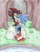 Alone in the Woods :Sonadow: by WolfSpirit1292