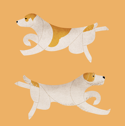 Year of the Dog  - Jack/Parson Russell Terrier by Kelgrid