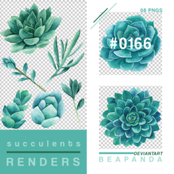Renders 166 // Succulents Pngs by BEAPANDA
