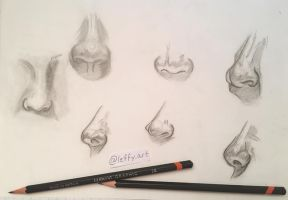 Nose Sketches by Leffyart