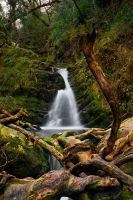waterfall whiskey by cprmay