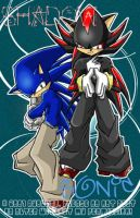 STH - Sonic and Shadow by ryochan