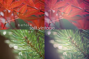 Soft vintage action by nomatterwhy