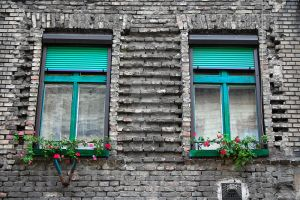 The Windows by violety