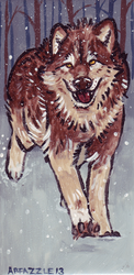 Wolf Running Through Snow by fazzle