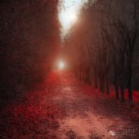 girl on the red carpet by ildiko-neer