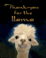 Llama Thank-you by DuneDrifter