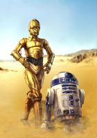 C3PO and R2D2 by cric