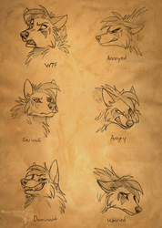 Raven Expressions by Nightrizer
