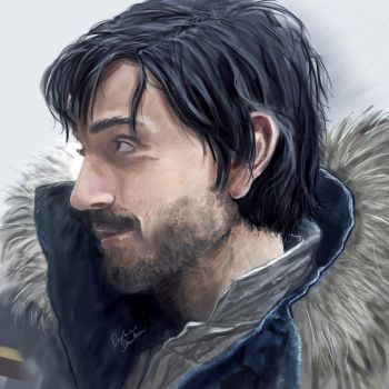 Cassian Andor by LibertineM
