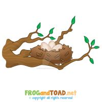 Nid - Nest FROGandTOAD by FROG-and-TOAD