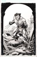 Warming up with Wolverine by IbraimRoberson
