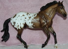 Breyer - Latigo - Stock 1 by Lovely-DreamCatcher