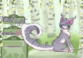 Mothflight | LC | Stormclan by TheShadowFell