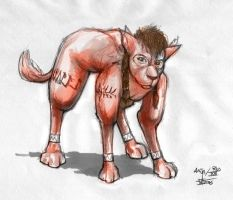 Red XIII - Costume 2 by veterinarian