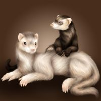 Squee and Johnny by ClemiKinkajou