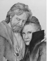 Luke and Leia by wings-and-thunder