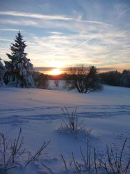 a winters day XI by mimose-stock