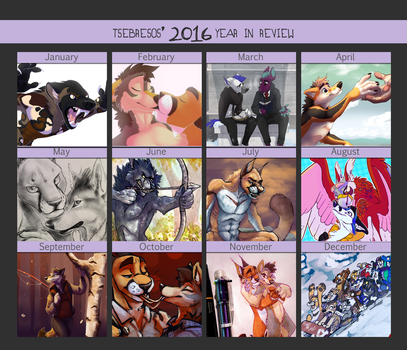 2016 Year In Review by Tsebresos
