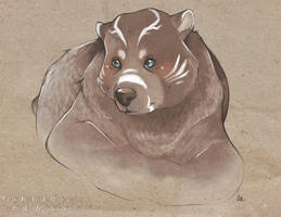 a burr by mybirdy
