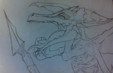 Riddled Ridley by phythonking