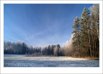 Winter view II by janograf