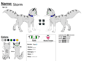 Storm Ref For My Club  by Tal-the-cat