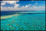 Heron Island by Dominion-Photography