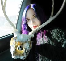 Skull ID by Oxidizing-Angel
