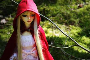 Lost Red Cape .2 by Y-n-Y
