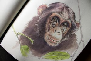 watercolor little cute monkey by Ondraede
